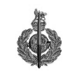 royal marine commando association logo
